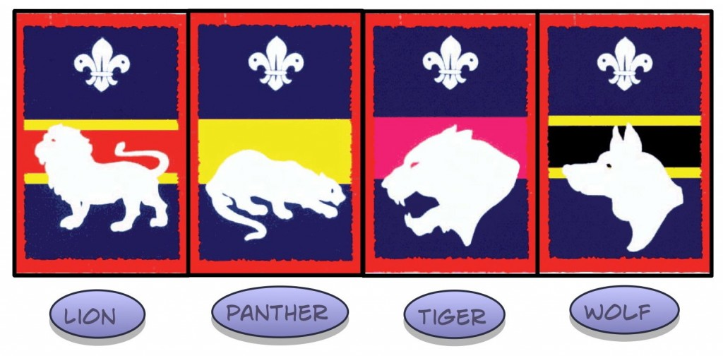 patrol badges
