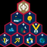 scout-challenge-badges