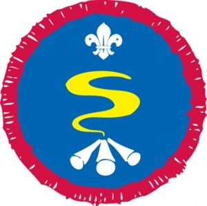 scout survival skills badge