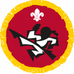 cub martial arts activity badge