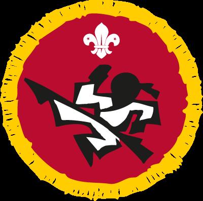 cub martial arts activity badge