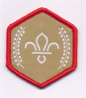 chief scout gold award