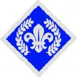 diamond chief scout award
