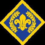 platinum chief scout award