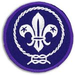 world scout 7cm badge